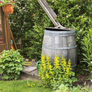 altes Regenfass aus Holz im Bauerngarten